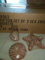 LIQUIDATION 16 sets of sea shell candles in Joliet, Illinois
