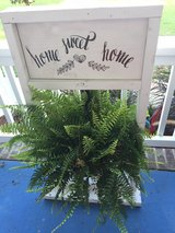 hanging plant stands in Fort Bragg, North Carolina