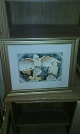 White Parrot picture in Gold frame in Cochran, Georgia