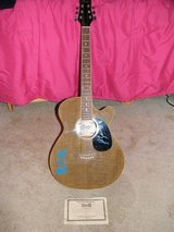 Country Musician LUKE BRYAN Guitar in Tinley Park, Illinois
