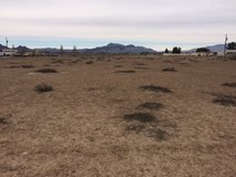 Pahrump- 1.14 ac. of prime land with well and electric/cable at property. 3/4 fenced. in Las Vegas, Nevada