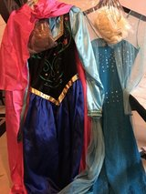 Elsa adult costume w wig in Plainfield, Illinois