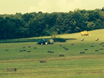 Horse quality alfalfa hay for sale in Fort Knox, Kentucky