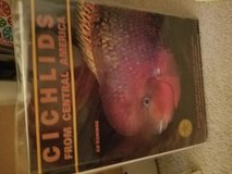 Cichlids in Glendale Heights, Illinois