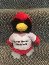 River Woods Elementary School Mascot in Bolingbrook, Illinois