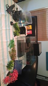 Fluval Tank and Accessories in Beaufort, South Carolina