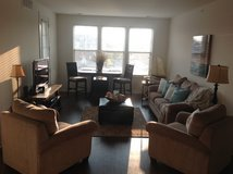 Entire apartment of furniture forsale in Naperville, Illinois