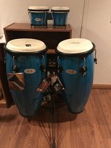 Congas and Bongos in Naperville, Illinois