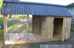 I'm looking for someone to make me a huge dog house! in Yucca Valley, California