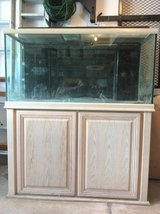 """Oceanic Systems""salt water 120 gallon fish tank(aquarium)with filtration system and light in Plainfield, Illinois"