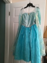 Elsa dress in Aurora, Illinois