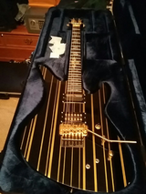 Shecter Sinister gates custom guitar with case in Beaufort, South Carolina