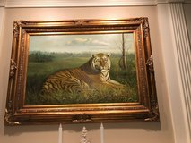 Tiger Picture in Kingwood, Texas