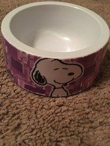 Snoopy Small Dog Bowl in Beaufort, South Carolina