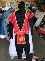 Shadow Ninja Costume in Chicago, Illinois