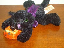 plush blk cat w/pumpkin in Oswego, Illinois