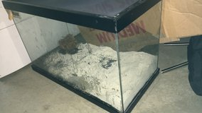 Critter tank w sand in Travis AFB, California
