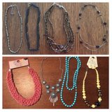 8 necklaces and one pair of earrings in Perry, Georgia