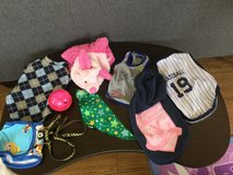 Small dog clothes and accessories lot in Okinawa, Japan