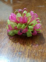 Pink and Green Bow in Pearland, Texas