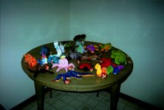 Beanie Baby Aquatic Animals in Tinley Park, Illinois