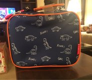 Dino Lunch Bag in Plainfield, Illinois
