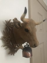 vintage wall mounted bull head in Fort Campbell, Kentucky