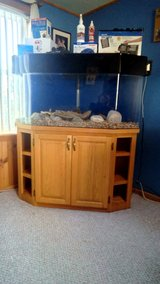 60 gallon Hexagon Acrylic Aquarium and cabinet with equipment in Fort Drum, New York