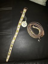 Spartina 449 leash and collar in Beaufort, South Carolina