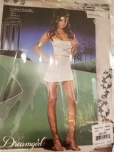 Ladies sexy Halloween Costumes in Schaumburg, Illinois