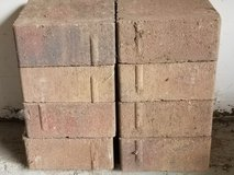 Paving bricks 5 1/2 inch in Elgin, Illinois