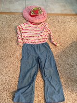 Halloween costume strawberry shortcake size 3t/4t in Westmont, Illinois