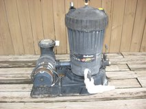 Jacuzzi DE pool filter and associated pool equipment in Naperville, Illinois
