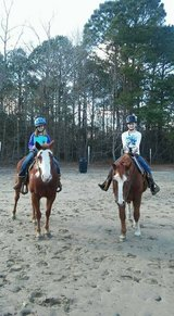 After School HorseBack riding lessons in Wilmington, North Carolina