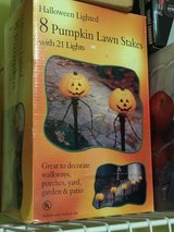 8 pumpkin lawn stakes in Chicago, Illinois