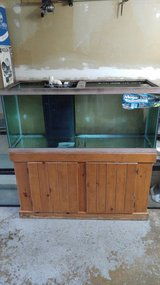 75 Gallon Megaflow Overflow Aquarium and Oak Stand in Orland Park, Illinois
