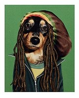 Pets Rock Canvas Art Bob Marley in Fort Irwin, California