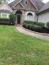 Lawn, Mulch, Tree Services, and More in Spring, Texas
