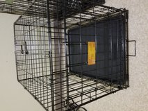 Small dog crate in Fort Irwin, California
