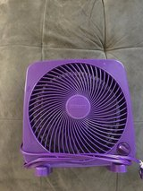 Small purple fan in Okinawa, Japan