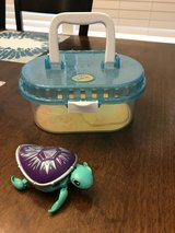 Reduced: Little Live Pets Turtle in Naperville, Illinois