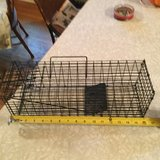 2 small animal traps in Fort Campbell, Kentucky