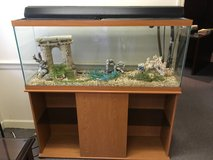 55-Gallon Aquarium with Storage Stand and more in Warner Robins, Georgia