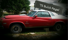 1975 Buick Regal in Byron, Georgia