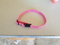 Xs dog collar in Fort Riley, Kansas