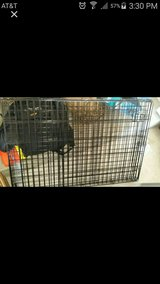 xl collapsible dog crate in Camp Pendleton, California