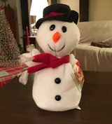 Snowball Beanie Baby in Naperville, Illinois