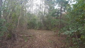 2 1/2 Acres in Huffman, TX in Spring, Texas