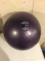 go fit core stability ball workout kit in Joliet, Illinois