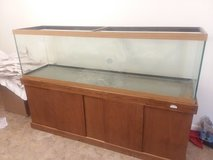 150 gal fish tank with stand in Fort Bragg, North Carolina